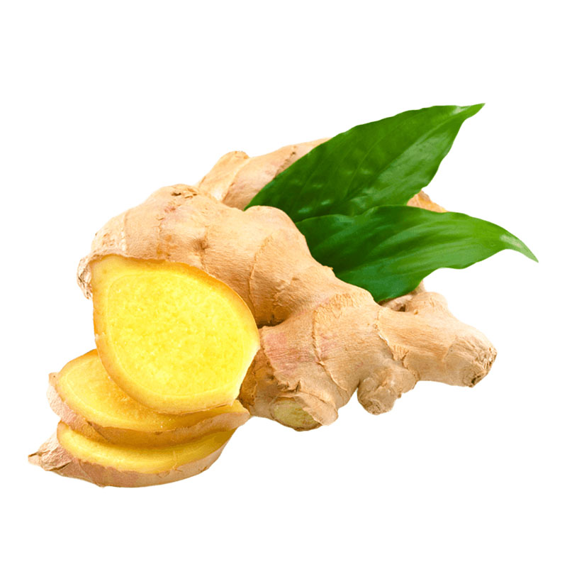 Ginger Extract Gingerol 5%-50%