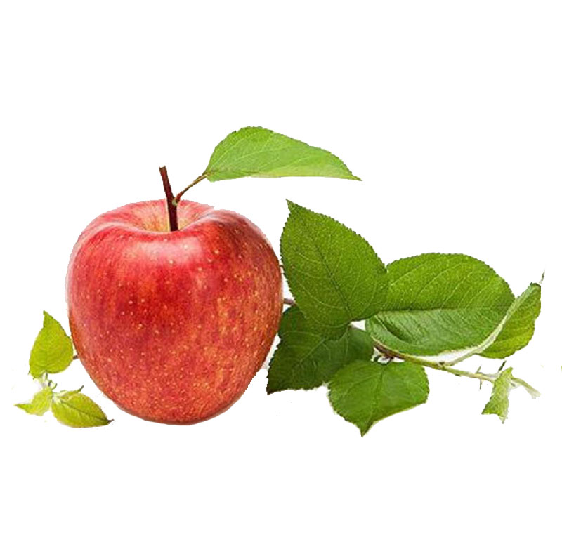 Apple Extract Apple Cider Vinegar 5%-8%