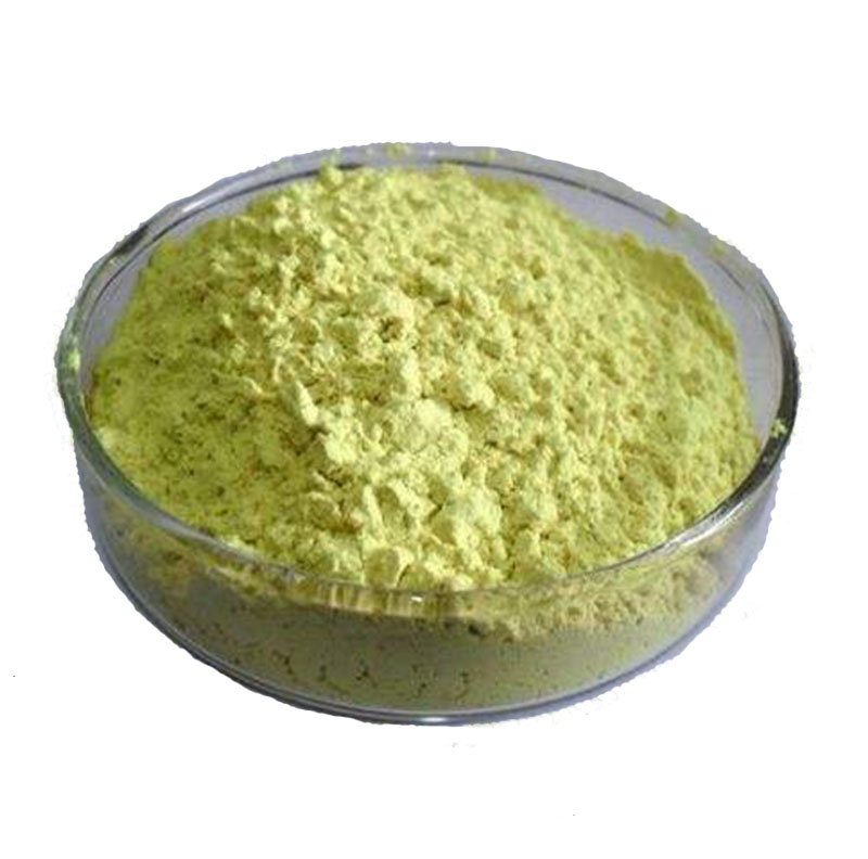 Sophora Japonica extract Rutin NF11